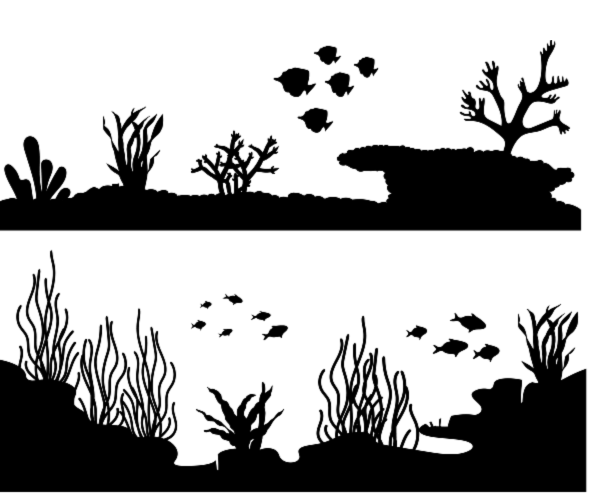 image-798601-screen_mega_coral_reef.png